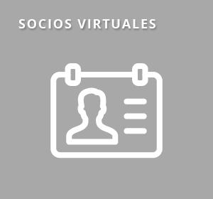 <span>Socios Virtuales</span><i>→</i>
