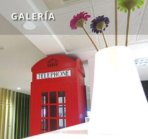 <span>Galería</span><i>→</i>