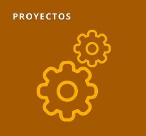 <span>Proyectos Destacados</span><i>→</i>